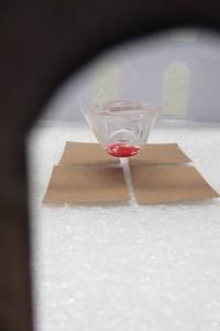 Blutgeschwister Modell 3